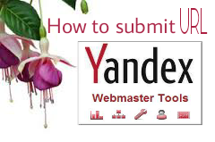 How-to-submit-url-to-google-webmaster-tools-in-hindi