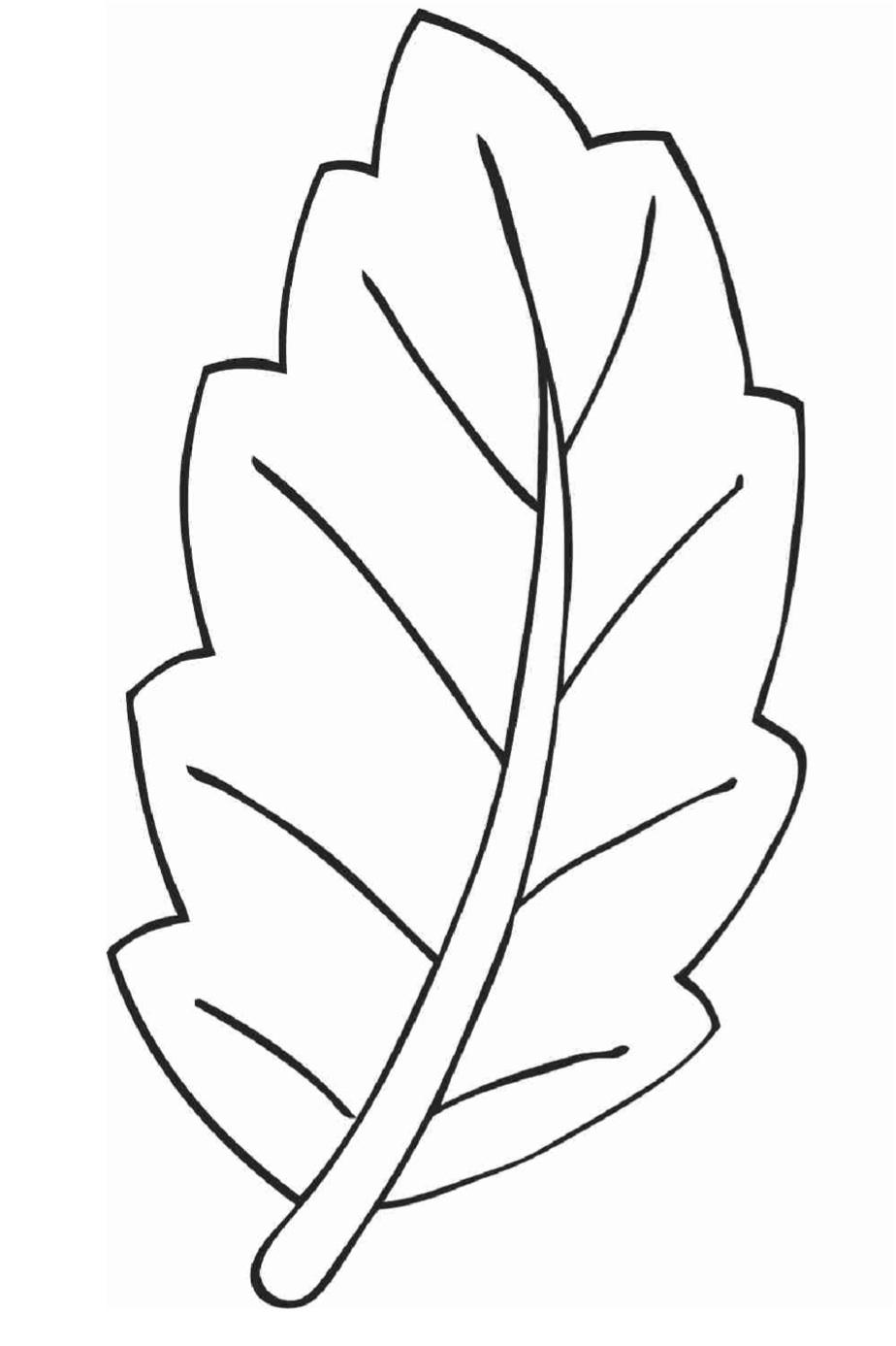 Jocuri Pentru Copii Mari şi Mici Planse De Colorat Cu Frunze