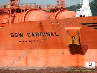 Bow Cardinal