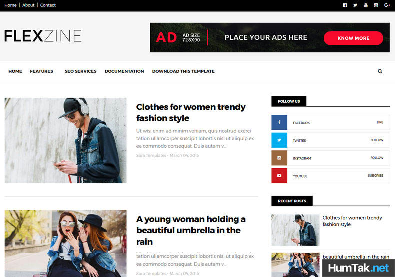 Flexzine Premium Mobile SEO Friendly Blogger Template free HumTak.net