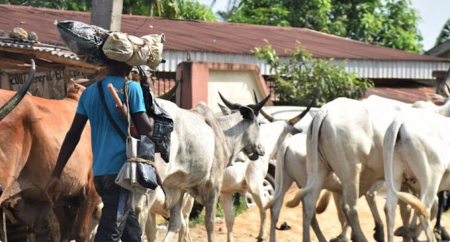 Garba Shehu: We need to stop herdsmen from roaming around