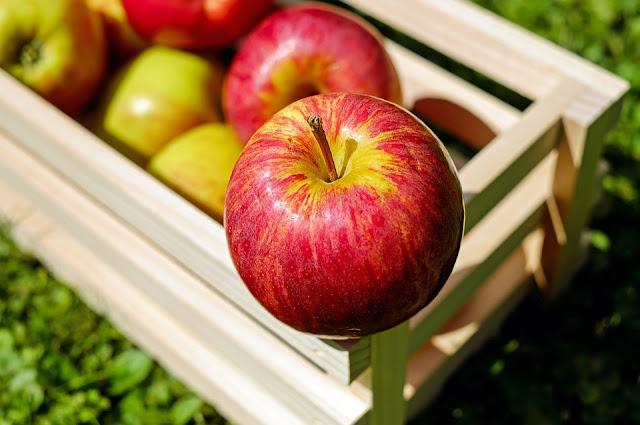 apel dan manfaatnya