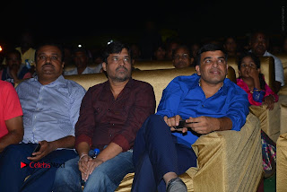 Nenu Local Audio Launch Stills  0188.JPG