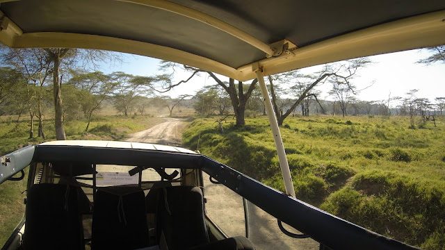 Through Lake Nakuru NP, Kenya