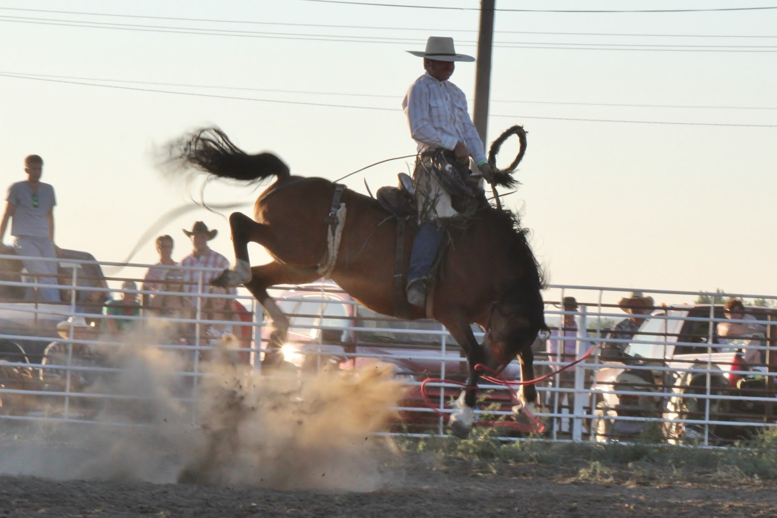 Wyocowboyphotography Ranch Broncs