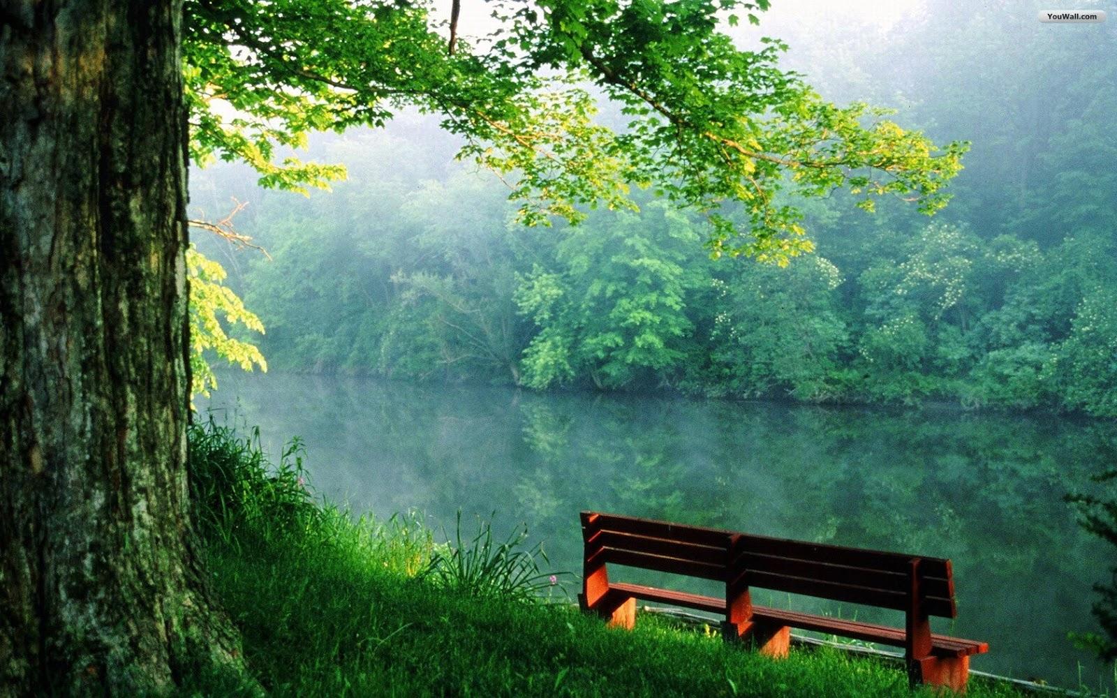 Best 10 River Wallpaper HD for Wonderful Background ~ HD ...