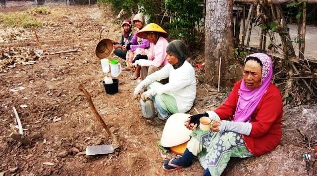 Petani di Lokasi TMMD Reguler Brebes Yang Kesulitan Air Pertanian