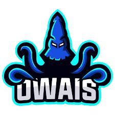 Owais PUBG