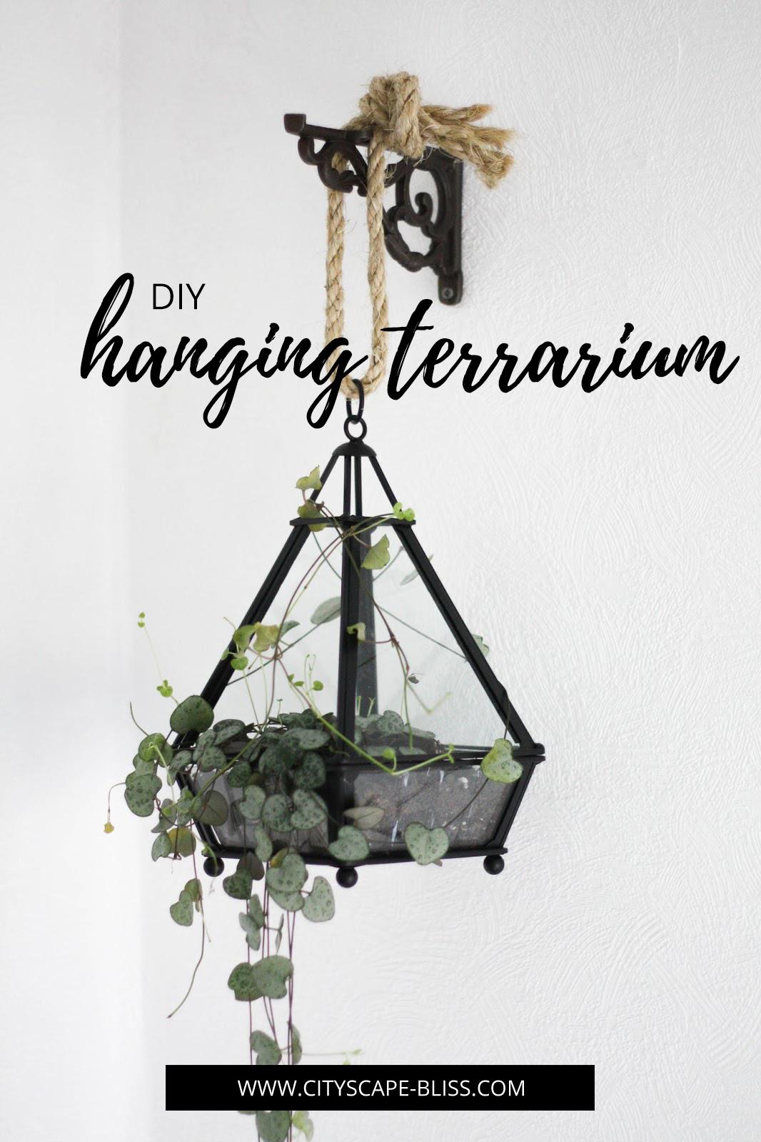 DIY Hanging terrarium