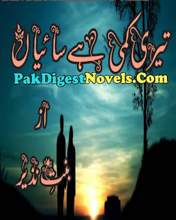 Teri Kami Hai Saiyaan Novel By Bint E Nazeer Pdf Free Download