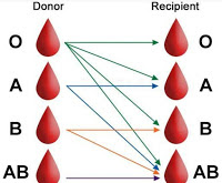 Blood Group Donars Details State wise District wise ,Town wise