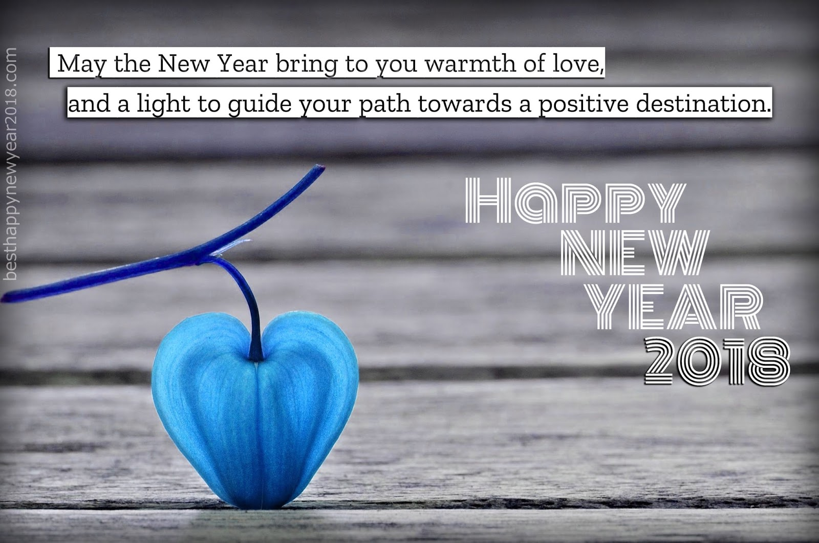 Happy new year 2018 greetings messages quotes for friends family 20182bnew2byear2bsayings kristyandbryce Gallery