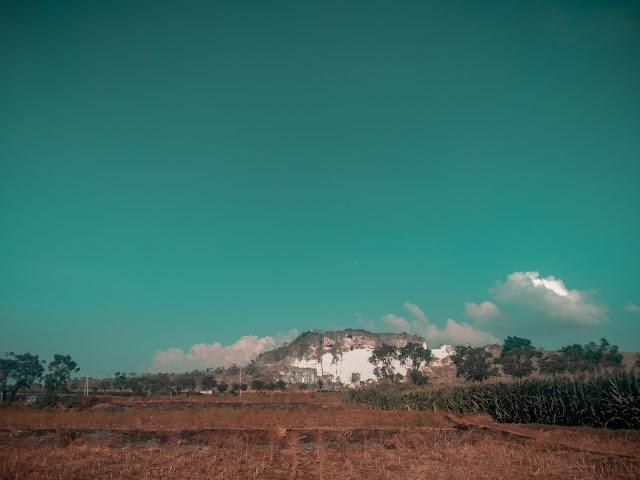 Pemandangan alam desa Pucangan Palang Tuban