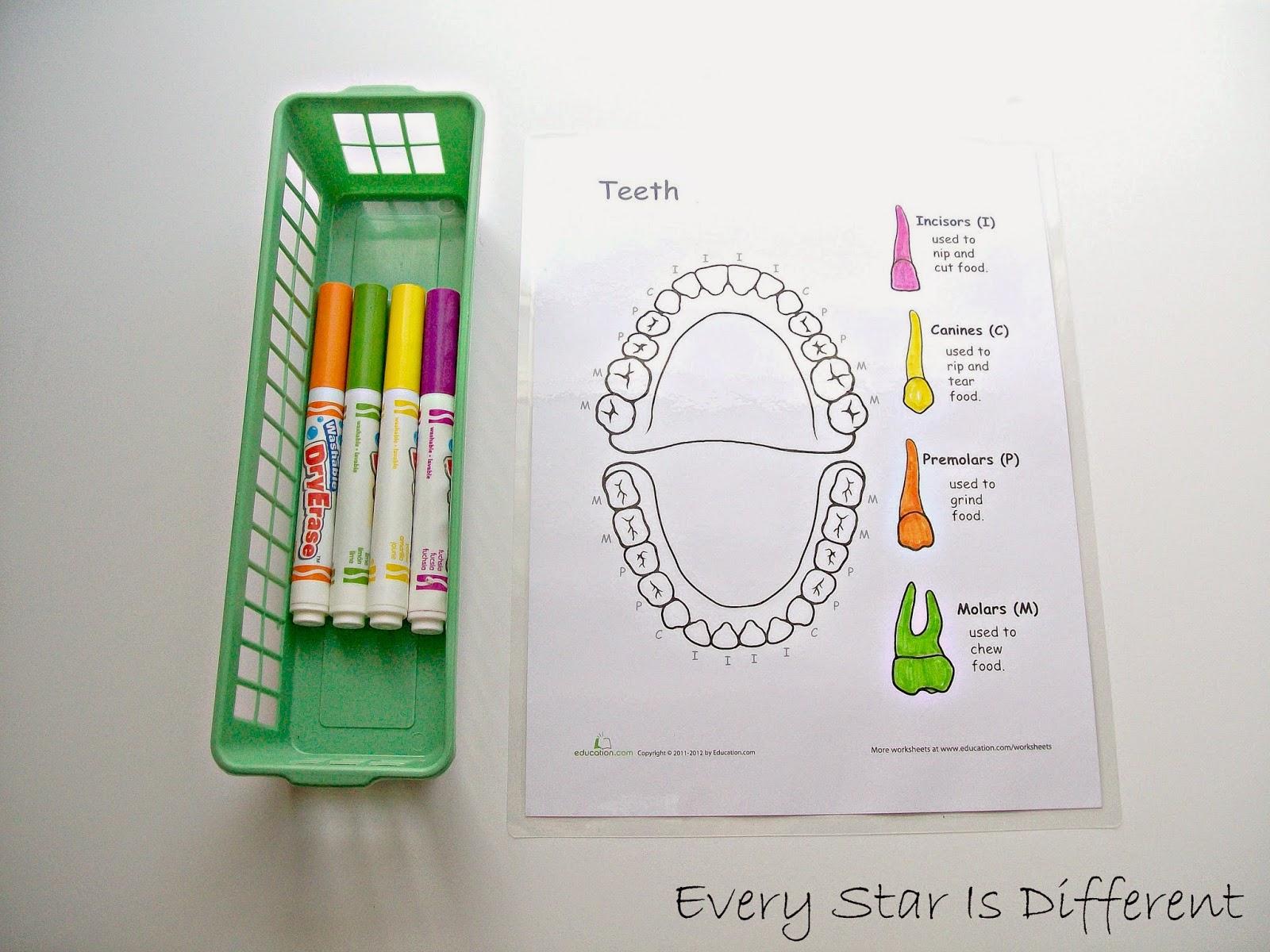 Dental Unit W Free Printables