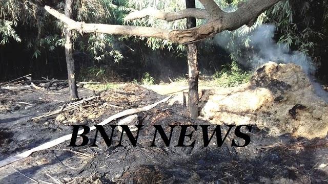 आग में दो बैल सहित तीन लाख की संपत्ति खाक
