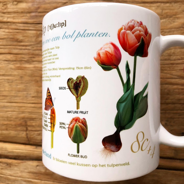 The tulips used in the design of the mug are the tulips that we planted bulbs in the garden and actually bloomed in the garden.
