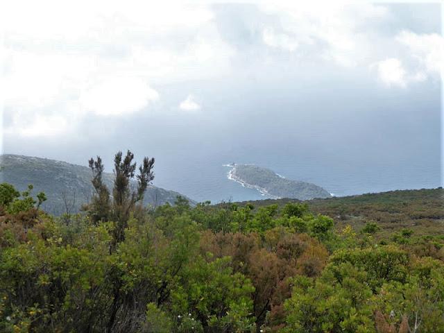 panorama sulla costa dell'elba