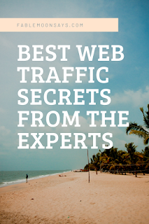 Best web traffic secrets from experts