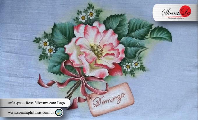 Aula 420 - Rosa Silvestre com Laço