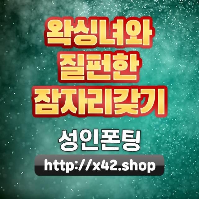김해시고양이무마취미용