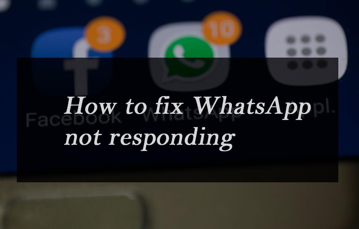 Mengatasi WhatsApp is not responding