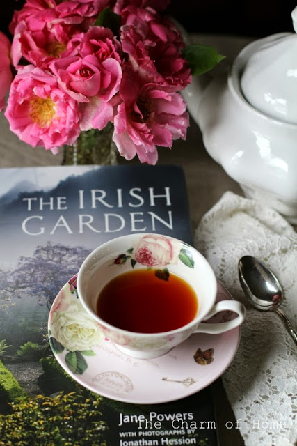 The Irish Garden: A Book Review