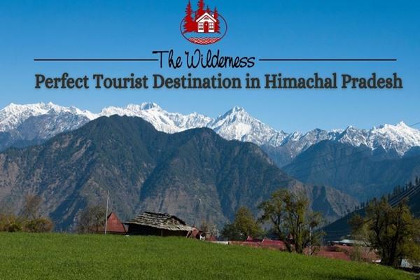 The Wilderness – Perfect Tourist Destination in Himachal Pradesh