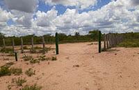 Meliantes roubam porteira entre Nova Palmeira e Pedra Lavrada; proprietário oferece recompensa