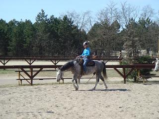 El Bronco, Unkari, lännenratsastus, Riitta Reissaa, Horsexplore