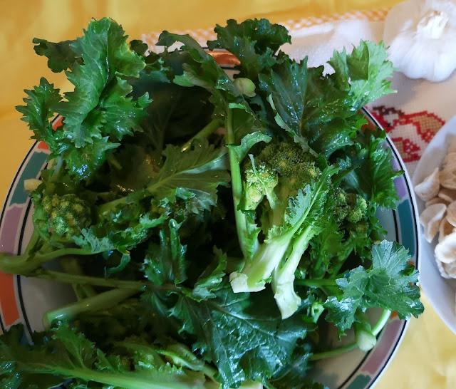 verdura pugliese, le cime di rape in un piatto