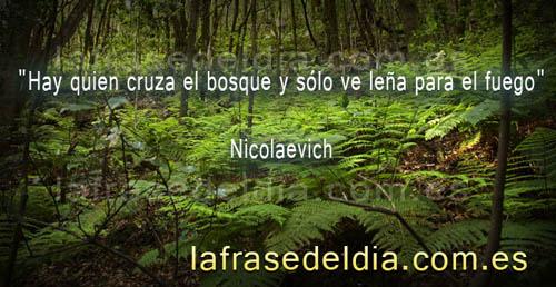 Citas célebres de Nicolaevich