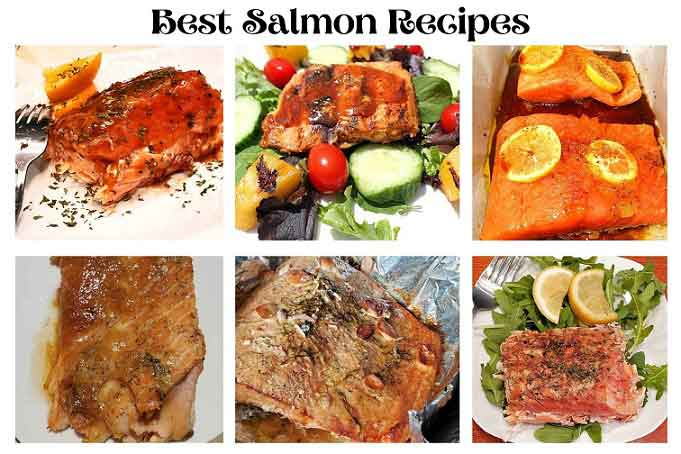 this is a salmon collage of all style recipes
