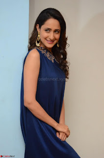 Pragya Jaiswal in beautiful Blue Gown Spicy Latest Pics February 2017 020.JPG