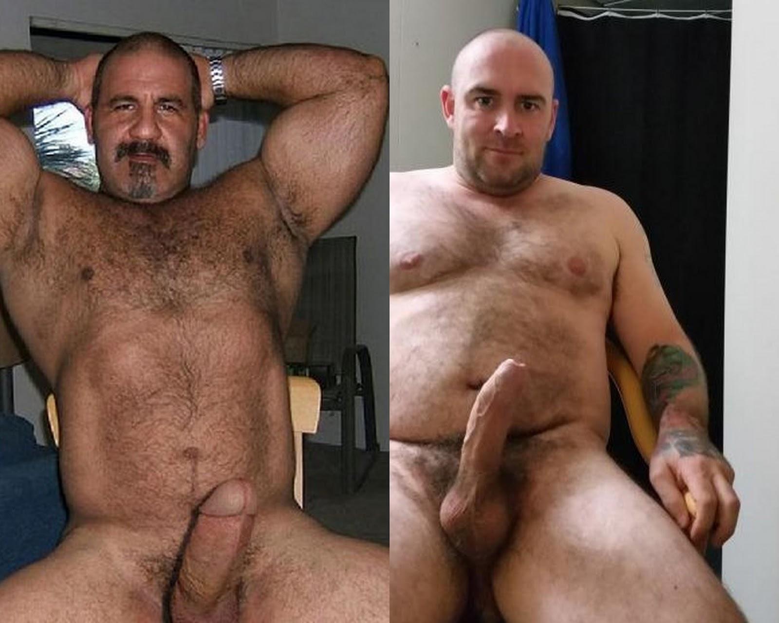 Gay Porn Ursos