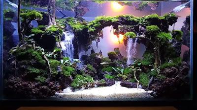 Aquascape 2 Air Terjun