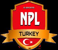 Fifa NPL Espor Ligi