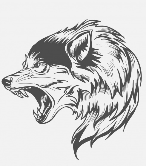 https://www.cooljoy.biz/search/label/Wolf%20Tattoos