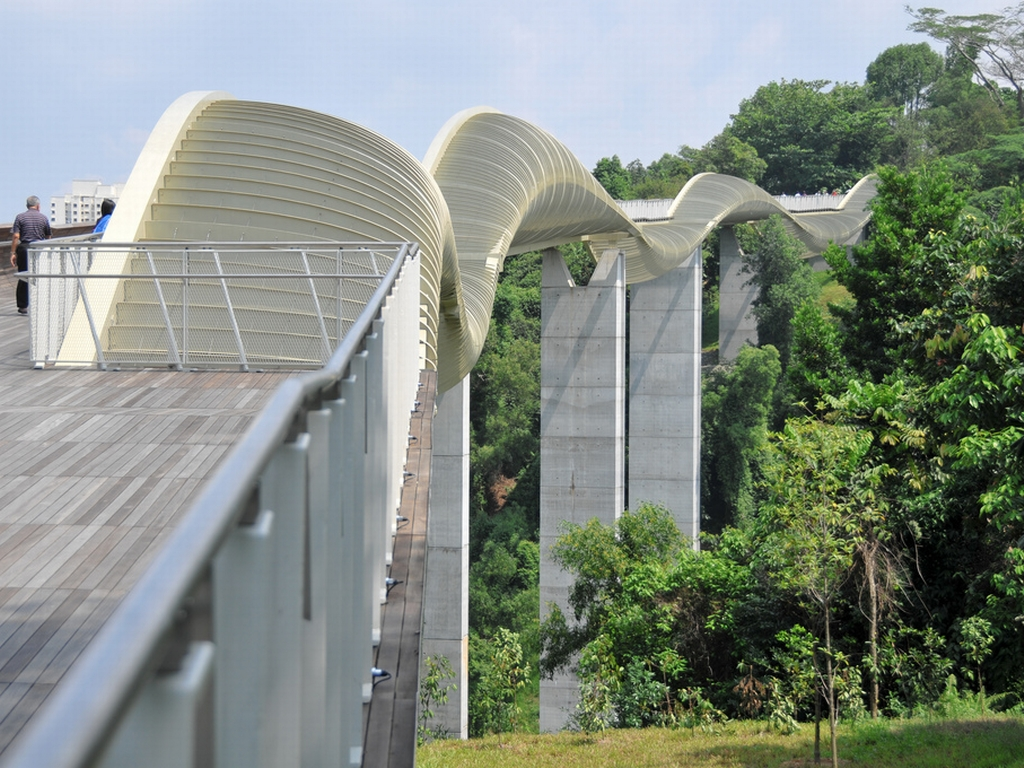 Henderson Waves, Singapore's tallest pedestrian bridge which connects Mount Faber to Telok Blangah Hill Park.
