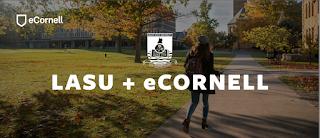 LASU - eCornell Certificate Programme Admission Form 2021