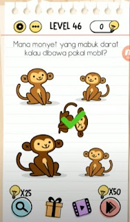 Mana Monyet yang Mabuk Darat Kalau Dibawa Pakai Mobil Brain Test