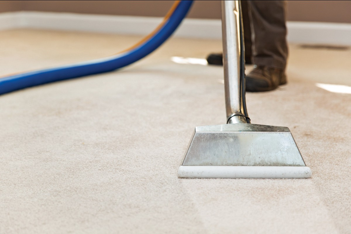 Why We Need To Hire Professional Cleaners For Carpet Cleaning