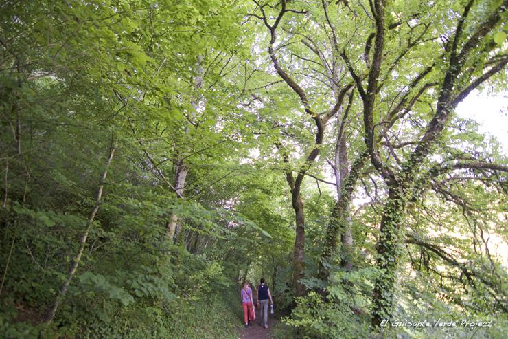 Sendero Abrigo Poisson, Les Eyzies de Tayac - Dordoña Perigord por El Guisante Verde Project