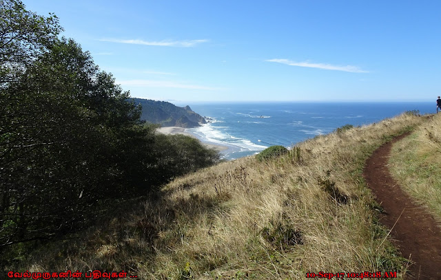 Oregon Cascade Head Hike
