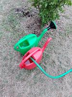 innaffiare l'orto con l'innaffiatoio