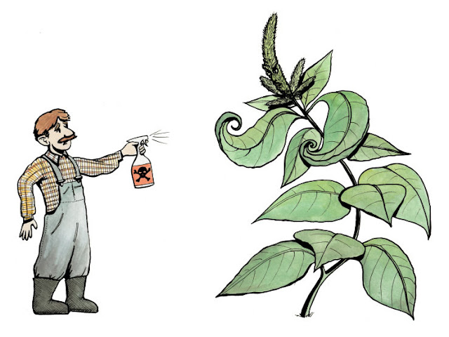 HOW TO FIGHTING PLANT ENEMIE?