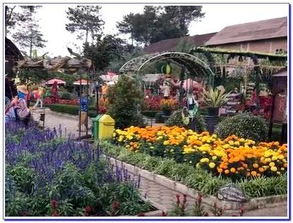 Lokasi Taman Bunga Begonia