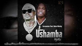 AUDIO | Harmonize Ft Naira Marley - Ushamba Remix | MP3 Download