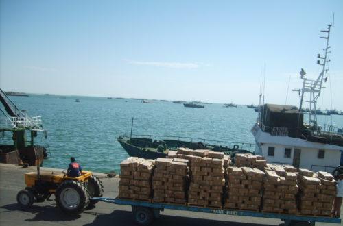 محكمة الحسابات : لا توجد قائمة بعدد السفن التي تشغلها عندونغ و لا بعمالها الموريتانيين..تفاصيل