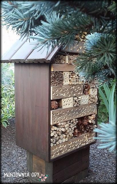 drewniany domek dla owadów pożytecznych