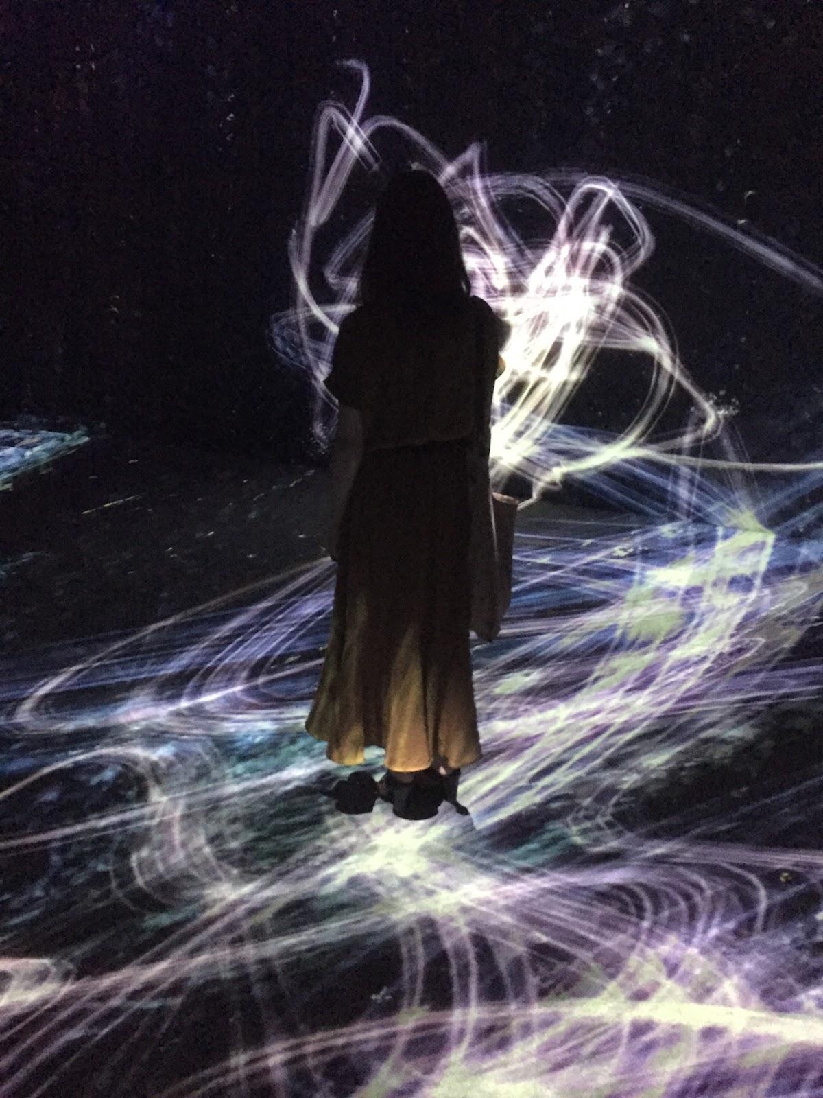 宇宙と芸術展:かぐや姫、ダ・ヴィンチ、チームラボ | 森美術館 | 2016-07 【鑑賞メモ】